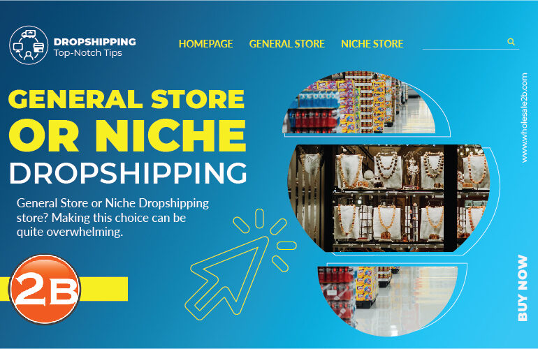 general store or niche dropshipping